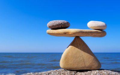 Le cerveau et l'équilibre émotionnel