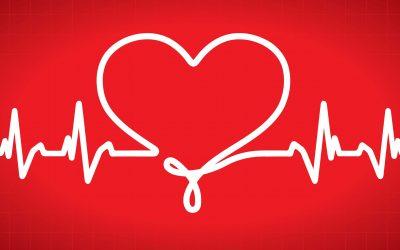 Les nutriments et le système cardiovasculaire