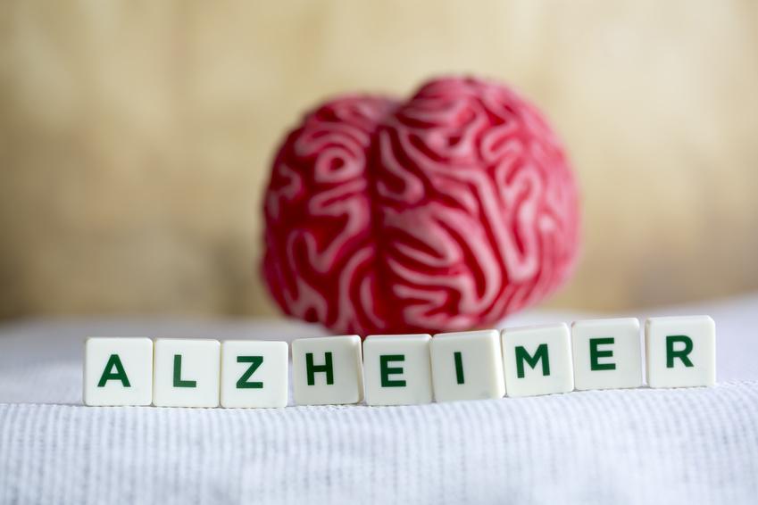 Perte de mémoire: peut-on parler de traitement naturel pour Alzheimer?
