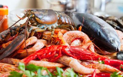 Oméga 3 marin ou d'origine végétal : quels aliments choisir ?